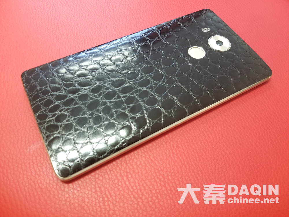 black crocodile skin